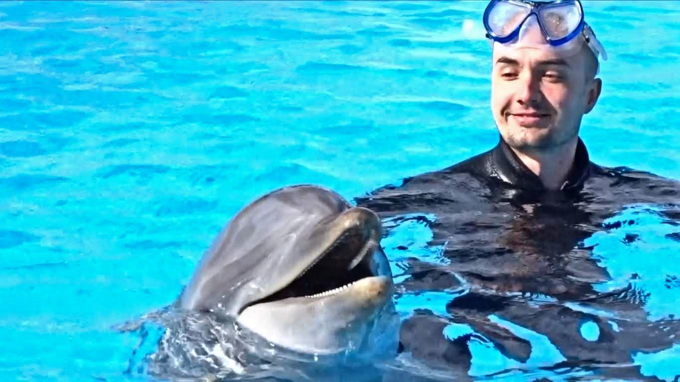 Pływanie z delfinami na Malcie pod koniec 2018 roku. Jakoś udało mi się połączyć pracę menedżera, prowadzenie firmy oraz tygodniowe wakacje.