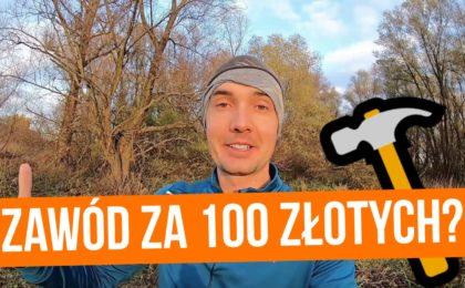 Jak zdobyć zawód za 100 złotych?